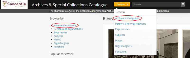 browse archival description